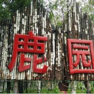 Hotel Pictures: Luyuan Mountain Villa, Antu