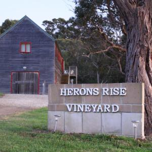 酒店图片: Herons Rise Vineyard Accommodation, Kettering