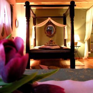 Hotel Pictures: Apartmány Novákovi, Nechanice