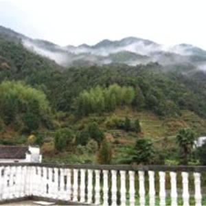 Hotel Pictures: Lvyou Home Inn, Wuyuan