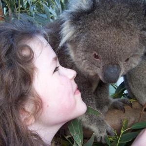 Fotografie hotelů: Fauna Australia Wildlife Retreat, Lavers Hill