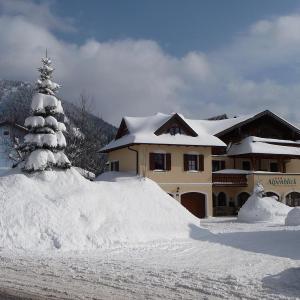 Hotel Pictures: Pension Alpenblick, Faistenau