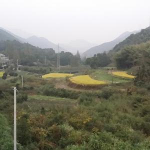 Hotel Pictures: Changshou Shanzhuang, Fenghua