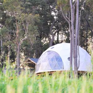 Hotel Pictures: Mile End Glamping Pty Ltd, Yelverton