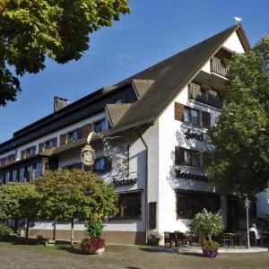 Hotel Pictures: Hotel Fortuna, Kirchzarten