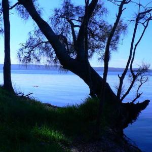 Hotel Pictures: Waterfront Jervis Bay Escape Cooinda, Jervis Bay Village