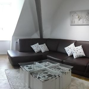 Hotel Pictures: Appartement Montagne Chic, La Bourboule