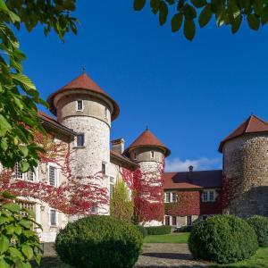 Hotel Pictures: Château de Thorens, Thorens-Glières