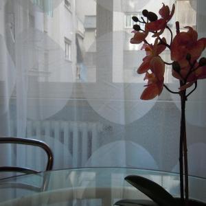 Foto Hotel: Ciao Casa Vacanze, Roma