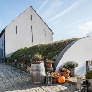 Hotel Pictures: Remushof Jagschitz, Oslip
