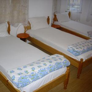Hotel Pictures: Hotel Zora, Borovan