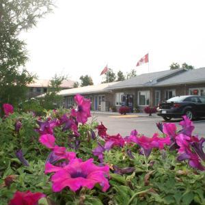 Hotel Pictures: Moonlight Inn & Suites, Sudbury