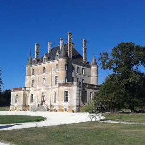Hotel Pictures: Château De Puybelliard, Chantonnay