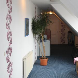 Hotelbilleder: Pension Alte Schmiede, Mittenwalde