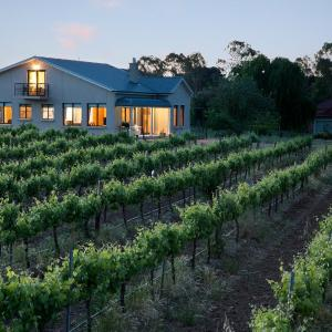 Fotos de l'hotel: Barossa Shiraz Estate, Lyndoch