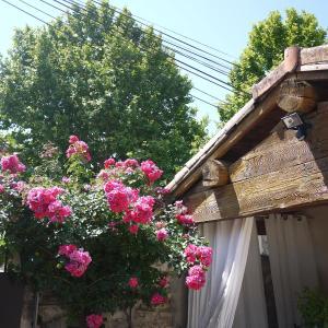 Hotel Pictures: Les Mazets Des Robiniers, Saliers