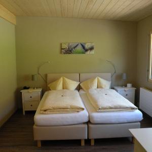 Hotel Pictures: Hotel Restaurant Rustica, Frutigen