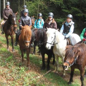 Hotellikuvia: Pferdehof Koaser Minerl, Ampflwang im Hausruckwald