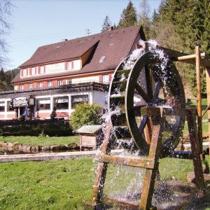 Hotelbilleder: Jägerhof Kropfmühle, Seewald