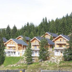 酒店图片: Chalet Koralpe Wellness Chalet, Elsenbrunn