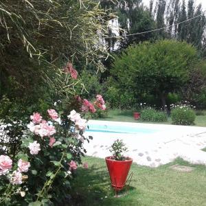 Foto Hotel: Cabañas Antonia, Tunuyán