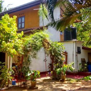 Foto Hotel: Raymond House(Sun Beach House), Weligama