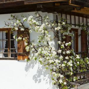 Hotelbilleder: Gästehaus Münchner Hof, Reit im Winkl