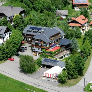 Hotelbilleder: Hotel Dachsberger-Hof, Wittenschwand