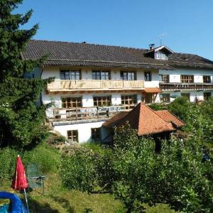 Hotel Pictures: Pension Landhaus Riedelstein, Drachselsried