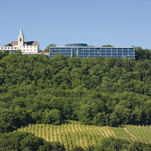 ホテル写真: Suitehotel Kahlenberg, ウィーン