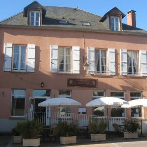 Hotel Pictures: Le Lion D'or, Ouroux en Morvan