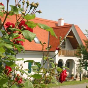 Φωτογραφίες: Gäste- und Vitalhaus Sauer, Kitzeck im Sausal
