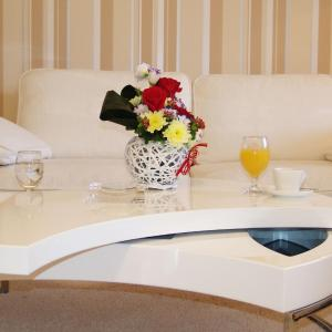 酒店图片: Hotel Vereya, 旧扎戈拉