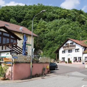 Hotel Pictures: Hotel Berg, Dannenfels