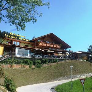 Zdjęcia hotelu: Gasthof Pension Perauer, Lieserhofen