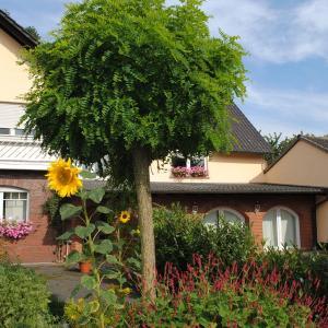Hotelbilleder: Landhotel garni & Seminarhaus Wiesengrund, Delbrück