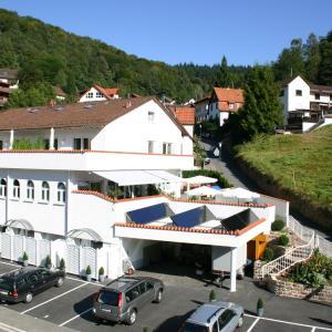 Hotelbilleder: Fewo und Apartments 'Zum Löwen' Heidelberg - Ziegelhausen, Heidelberg
