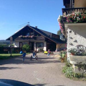 Hotel Pictures: Willmannshof, Furtwangen