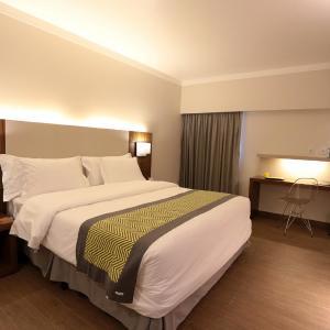 Hotel Pictures: Oasis Plaza Hotel, Ribeirão Preto