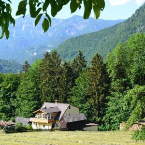 Hotelfoto's: Ferienwohnung Alpenwiesen, Bad Ischl