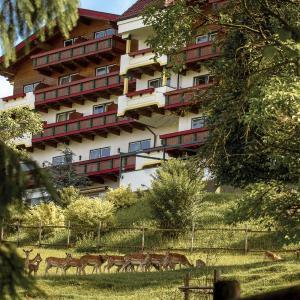 Hotelbilleder: Natur- und Wohlfühlhotel Kastenholz, Wershofen