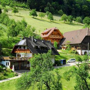 Hotel Pictures: Eisenmannhof, Gengenbach