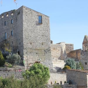 Hotel Pictures: Castell de Fonolleres, Fonalleras
