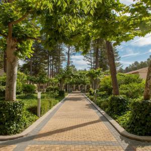 Hotel Pictures: Confluent Health Resort, Cofrentes