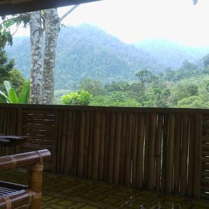 Hotelfoto's: Batu Kapal Jungle Houses, Bukit Lawang