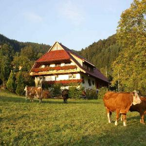 Hotelbilleder: Unterer Gurethshof, Zell am Harmersbach