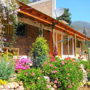 Hotel Pictures: Hosteria Los Olivos, Quebrada de Alvarado