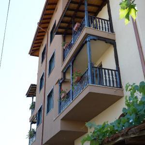 Zdjęcia hotelu: Family Hotel Demetra, Berkovitsa