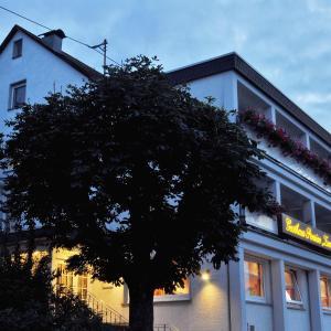 Hotelbilleder: Landgasthof Eiserner Ritter, Boppard