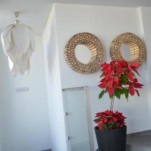 Hotel Pictures: El Baladero Apartamentos, Telde